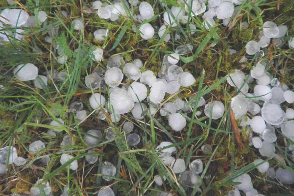A pile of hail stones covers a homeowner's lawn. roofing San Marcos