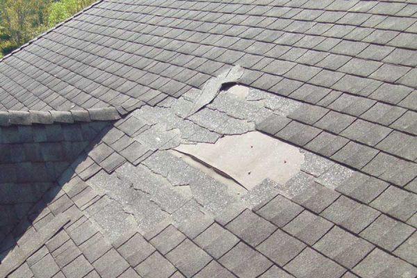 Damaged Shingles in need of roof repair in Buda TX