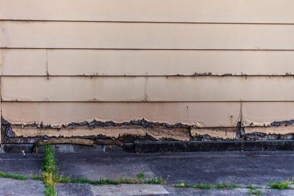 Damaged Siding on House