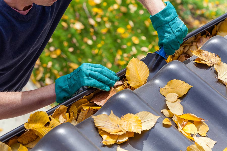 Roof with fallen leaves being maintained by the Divided Sky Roofing Buda TX roof repair team