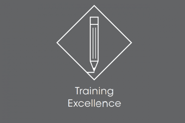 "Icon of a pencil with the text ""Training Excellence"""